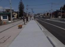 R289 馬町 自転車道・歩道整備